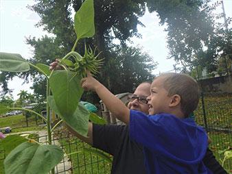 Maestra muestra una planta a un niño en el patio