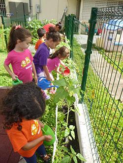 Grupo de niños en el huerto escolar